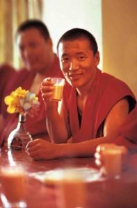 Le goji sauvage du Tibet ou de l'Himalaya assure longévité et bonne santé